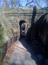 <h5>The Rambles, Central Park.</h5>